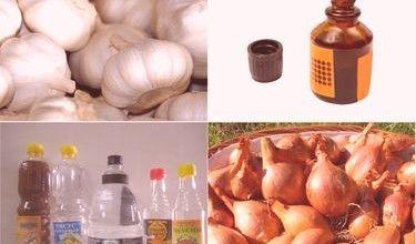 Народные средства от грибка