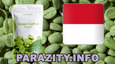 Green coffee for Indonesia