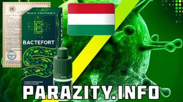 Bactefort for Hungary