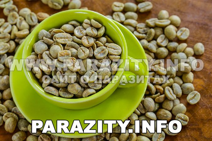 Where to buy the original Green Coffee bean extract in capsules? Official website